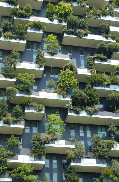 trees on balconys